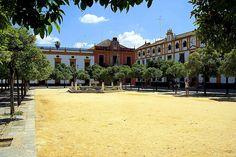 El Patio de Banderas, zona diáfana que se encuentra dentro del recinto fortificado del Alcázar, constituye la entrada principal de dicho edificio para sus ilustres ocupantes. En la actualidad constituye la salida de visitantes turísticos provenientes de los Reales Alcázares.