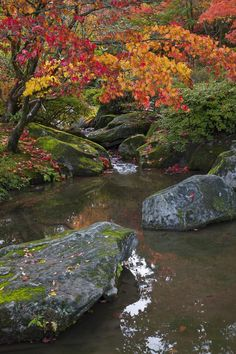 Seattle Japanese Garden by Khamis Hammoudeh via Flickr Japanese