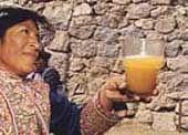 """Ricetta per la """"chicha de jora"""",  bevanda degli Incas. Per uno stomaco non abituato, risulta leggermente pesante e può provocare il classico """"mal di pancia""""  Attenzione: una """"chicha"""" preparata male può provocare forti coliche addominali."""