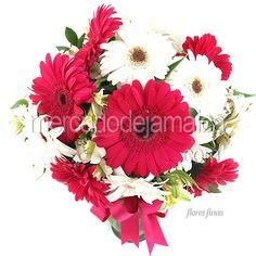 Gerberas Fucsia Floral| Envia Flores