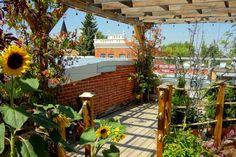 Patio, Terrace, Porch, Courtyards