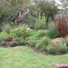 8 garden themes to consider for your home Front Garden Landscaping, Front Garden Path, Front Gardens, Front Yard Garden Design, Fence Design, Landscaping Images, Landscaping Plants, Small Gardens, Native Gardens