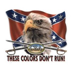 3X5 These Colors Don't Bleed Confederate Flag Rebel Yell, Southern Pride, Southern Style, Rednecks, Confederate Flag, Funny Signs, American Flag, Eagle