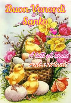 Here are beautiful Daily Wishes with good pictures of morning, afternoon and All of the daily wishes, quotes and greetings Greetings Images, Good Morning, Cool Pictures, Teddy Bear, Easter, Cards, Painting, Animals, Album