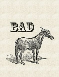 Bad Ass - Art Print by Jacqueline Maldonado