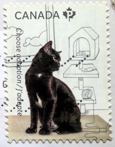 It is from the 2013 Choose adoption / adopt a pet series, which shows photos of the animals surrounded by a line-drawing illustration of an imagined home life, once they are adopted. And look at the little kitty looking longingly at the cat furniture with a ball of string and a mouse toy.