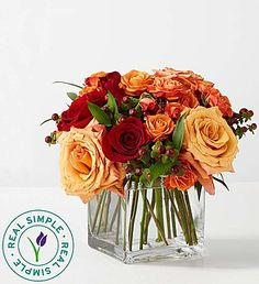 Our vibrant fall arrangement mirrors the magnificent colors found in nature this time of year. Rich red and orange roses, red hypericum and more are artistically gathered in a striking rectangular glass vase by our expert florists. It's the perfect gift to show your true colors by reminding all the important people in your life how much you care!