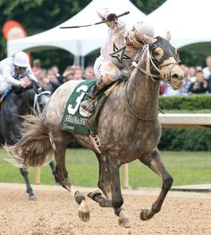 """""""Destin's Creek at the Belmont Stakes, he got 2nd!""""-Madi"""