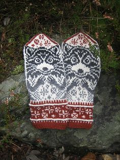 Dirty little beggars ; There is a family of five such creatures living near our house. They come to us almost every night in hope to find something to eat (or wreck). Knitted Mittens Pattern, Knit Mittens, Knitting Patterns, Crochet Patterns, Hand Warmers, Ravelry, Needlework, Knit Crochet, Quilts