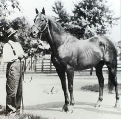 Man O'War with Will Harbut. Man O'War died shortly after Will, his longtime groom.