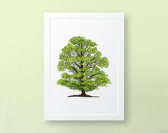 Excited to share this item from my #etsy shop: Elm Tree Illustration, A5 Art Print, Wall Art, Nature, Tree Illustration, Unframed Art Print Art Prints For Sale, Wall Art Prints, Framed Prints, Nature Tree, Art Nature, Elm Tree, Tree Illustration, Tree Art, Printing Services
