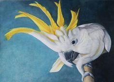 "Cockatoo Art Print. ""Hello Mate!"" by CassandraHanleyArt on Etsy"