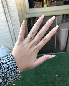 Want to know how to do gel nails at home? Learn the fundamentals with our DIY tutorial that will guide you step by step to professional salon quality nails. Real Long Nails, Grow Long Nails, Elegant Nails, Stylish Nails, Trendy Nails, Natural Looking Nails, Long Natural Nails, Nail Design Kit, Gel Nails At Home