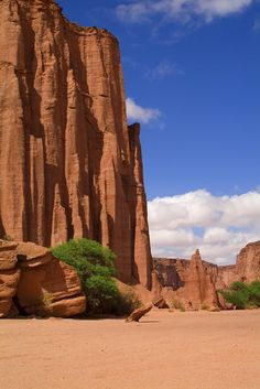 Talampaya National Park, The Cathedral, La Rioja Province, Argentina by Gabrielle Therin-Weise