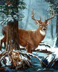 Deer/Antelope teaches a need to insulate one's self or come out of hiding. There may be indications of heightened psychic ability, adaptability with strong survival skills, new opportunities/adventures ahead or learning how to overcome obstacles with balance, swiftness and gentleness.