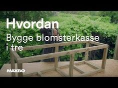 Bilderesultat for bygge plantekasser - Hello Lemon Lime Nandina, Outdoor Areas, Outdoor Structures, Carport Modern, Sweet Potato Plant, Fountain Grass, Diy Dining Table, Fall Planters, Colorful Plants