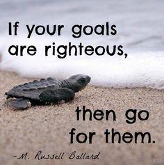 Righteous Goals M Russell Ballard