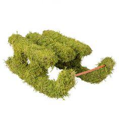 Dekorativer Moosschlitten Von Pflanzen Kölle. Der Vielseitig Zu  Dekorierende Schlitten Aus Echtem Moos überzeugt