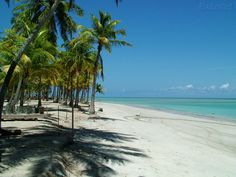 If you do one thing before you die, get to Barra Grande, Bahia, Brazil