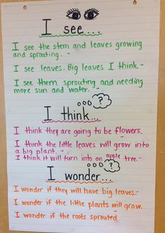 Extending and challenging chiildren's thinking in kindergarten - use in PPC…
