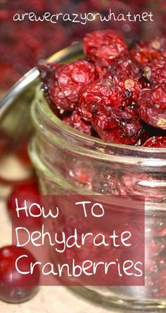 Step by step instructions for dehydrating cranberries. Plus two methods tested. #beselfreliant