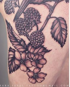 Blackberry Bush #blackberry #berries #bush #fruit #vines #sara fabel #tattoo #womantattooer #blackwork #blackandgray #thigh #sleeves #dotwork #anatomical #botanical #animals #geometric