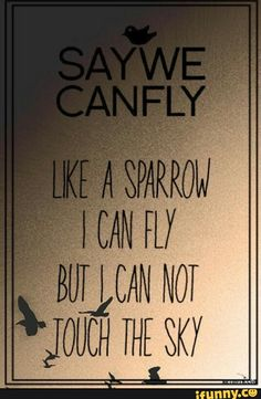 saywecanfly quotes - Google Search
