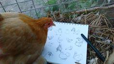 Edd Cross Illustrator sketchbook with cute pekin bantam chicken on top