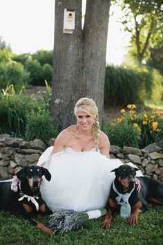 bride and her pups   Courtney Reese Photography   Glamour & Grace