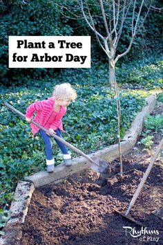 Every year the public is encouraged to plant and care for trees on Arbor Day. Learn how to plant a tree any day of the year using these simple tips.Arbor day is celebrated on different days around the world, but you can plant a tree to celebrate any day