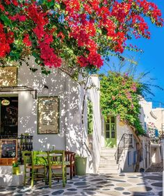 Bougainvilleas in a cafeteria at Naoussa village Paros island, Cyclades, Greece Beautiful Places To Travel, Wonderful Places, Beautiful World, Travel Around The World, Around The Worlds, Greece Islands, Cyclades Islands, Beaches In The World, Bougainvillea