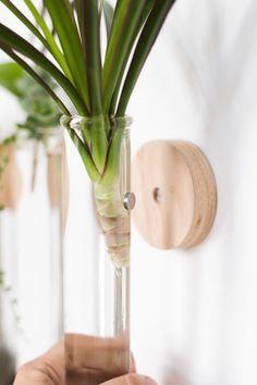 Modern Test Tube Propagation Planter - Decoration for All Plant Wall, Plant Decor, Plant Projects, Diy Projects, Bathroom Plants, Diy Décoration, Easy Diy, Diy Planters, Diy Wall Planter