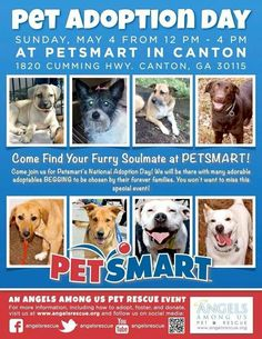Angels Among Us Pet Rescue - Pet Adoption Day