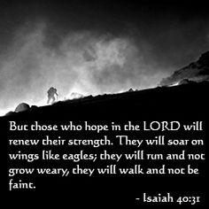 I will soar on the wings of the eagle.God gives us strength to soar, and strength to endure! Jesus is able to give us the ability to do things that we, ourselves, do not think that we have the abilities to do! Scripture Verses, Bible Verses Quotes, Bible Scriptures, Me Quotes, Powerful Scriptures, Faith Quotes, Qoutes, Favorite Bible Verses, Words Of Encouragement