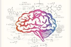 Brain and calculations (drawing) - esenkartal/iStock Vectors/Getty Images