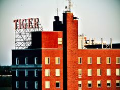 Tiger Hotel: Columbia, MO