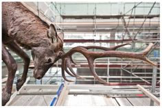 Foto: Claudia Corrent Pre Opening, Renzo Piano, Giraffe, Heart, Animals, Museum, Fotografia, Felt Giraffe, Animales