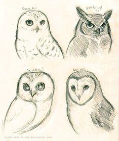 bird art Coloring Pages printables Bird sketch pencil art 68 Ideas animals animal sketches art Bird Coloring Ideas Pages Pencil printables Sketch Bird Drawings, Pencil Art Drawings, Art Drawings Sketches, Animal Drawings, Cute Drawings, Sketch Drawing, Drawing Art, Pencil Sketch Art, Drawing Owls