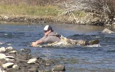 Watch This Dude Nearly Tackle the Biggest Brown Trout You've Ever Seen