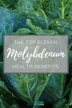 Here are the 11 most important health benefits of Molybdenum.