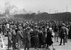 The arrival and processing of an entire transport of Jews at Auschwitz-Birkenau extermination camp in Poland, in May of 1944. It was not uncommon for 85% to be murdered within an hour of arrival.