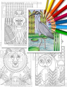 Mod Animal Pack Vol 1  Digital Download Coloring by ModernColoring