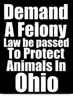 Demand a FELONY LAW to be passed in Ohio to protect innocent animals. Nitro's Law.