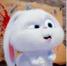 Cute Bunny Cartoon, Cute Cartoon Characters, Cute Cartoon Pictures, Cartoon Pics, Cute Cartoon Wallpapers, Cute Pictures, Snowball Rabbit, Rabbit Wallpaper, Funny Rabbit