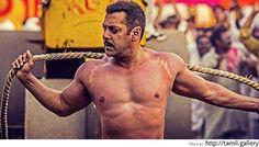 சல்மான் கானின் சுல்தான் 12 நாட்களில் ரூ.500 கோடி வசூலித்தது - http://tamilcinema.news/2016071943188.html