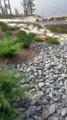 Moderni huvilapiha Kisko, Salo | Toivepiha Oy Stepping Stones, Garden Design, Outdoor Decor, Summer, Garden Ideas, Home, Gardens, Trendy Tree, Garden Landscaping