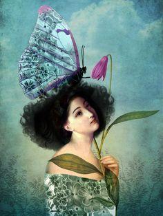 In the butterfly-garden