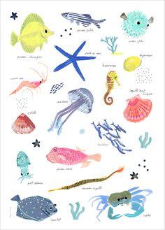 Poster, Affiche pour enfant thème Mer, poissons, Illustration