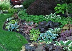 a garden in the shade, container gardening, flowers, gardening, landscapes, outdoor living, succulents, This homeowner has mixed different colored heuchera and hostas in a way that I haven t quite seen before Though there isn t that much in flower it is still colorful