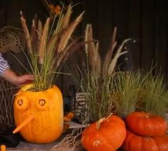 P. Allen Smith's pumpkin display.